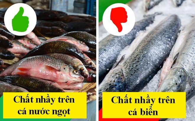 8 dấu hiệu nhận biết chọn mua cá tươi ngon: Cá hồi màu đẹp không hẳn đã tốt 008