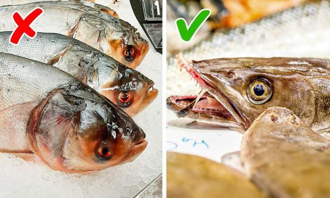 8 dấu hiệu nhận biết chọn mua cá tươi ngon: Cá hồi màu đẹp không hẳn đã tốt 006