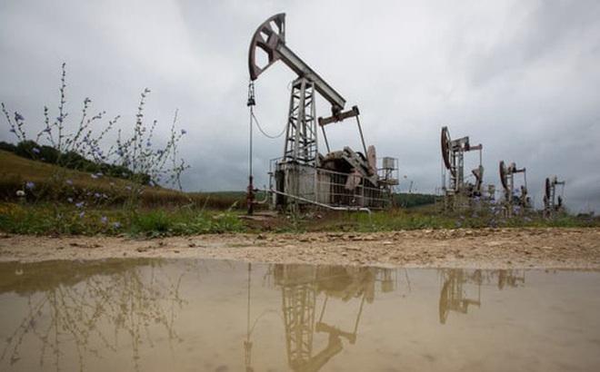 OPEC+ nới sản lượng sau cuộc gọi của Mỹ, giá dầu bất ngờ tăng mạnh