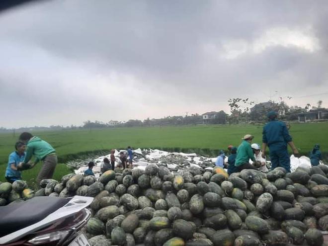 Người dân Hà Tĩnh thu gom giúp anh lái xe chở dưa lao xuống ruộng, mua giúp 15 tấn - Ảnh 1.