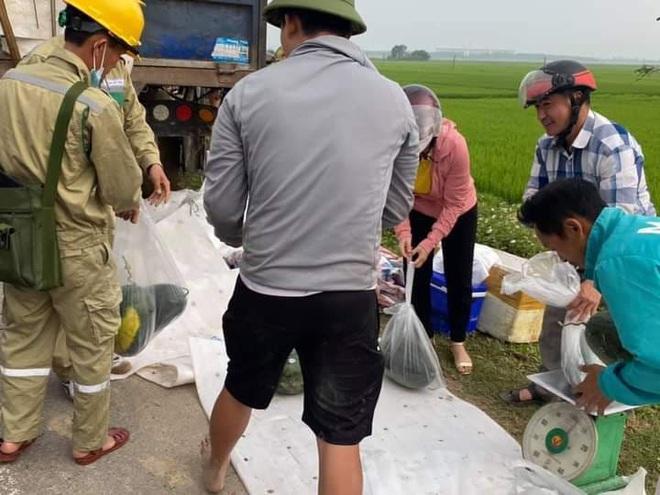 Người dân Hà Tĩnh thu gom giúp anh lái xe chở dưa lao xuống ruộng, mua giúp 15 tấn - Ảnh 3.