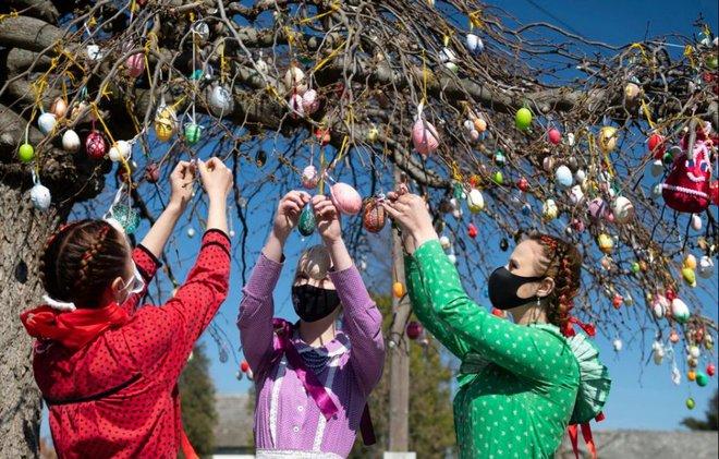 24h qua ảnh: Các thiếu nữ trang trí cây bằng trứng Phục sinh - Ảnh 3.