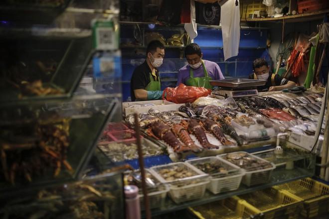 Cơn lốc thuốc kháng sinh bóp nghẹt Trung Quốc: Vì yêu cá, người nuôi dùng luôn hàng cấm - Ảnh 2.