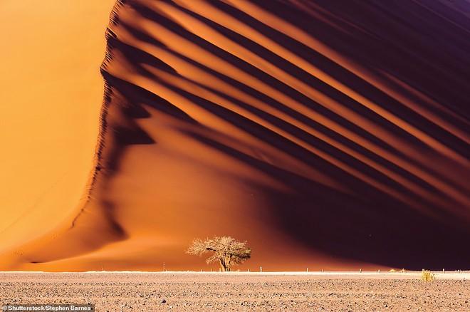 Những bức ảnh đẹp đến nghẹt thở, cho thấy sức mạnh khủng khiếp của Mẹ Thiên nhiên 0014