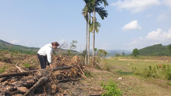 Cây cối bị chặt hạ, đất đai bị san ủi khi đang chờ đền bù để xây thuỷ điện - Ảnh 3.