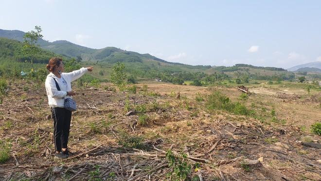 Cây cối bị chặt hạ, đất đai bị san ủi khi đang chờ đền bù để xây thuỷ điện - Ảnh 1.