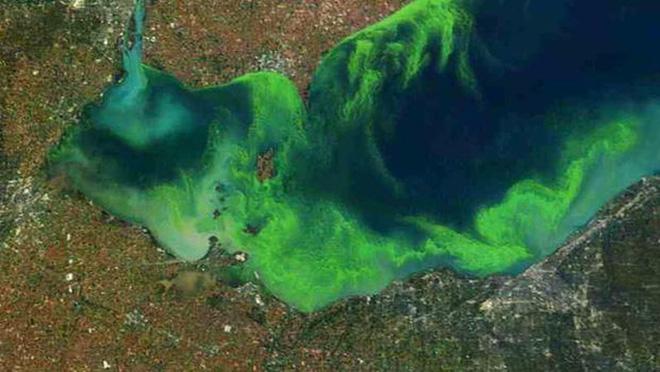 Sinh vật hàng tỉ tuổi phóng yếu tố chết nhanh vào không khí nhiều nơi trên thế giới - Ảnh 1.