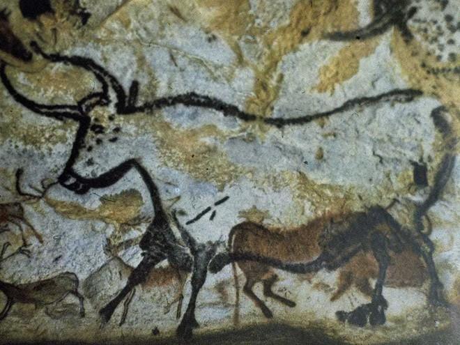 Bản đồ 40.000 năm tuổi thể hiện kiến thức tinh vi về các chòm sao - Ảnh 1.