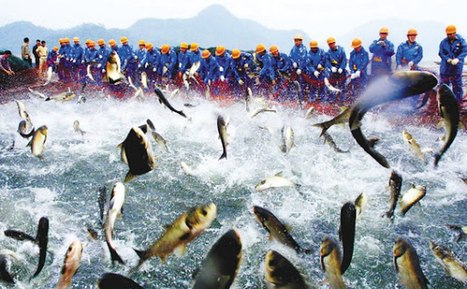 Đập Tam Hiệp là đập thủy điện lớn nhất thế giới: Đâu là cái giá thiên nhiên phải gánh chịu cho công trình này?