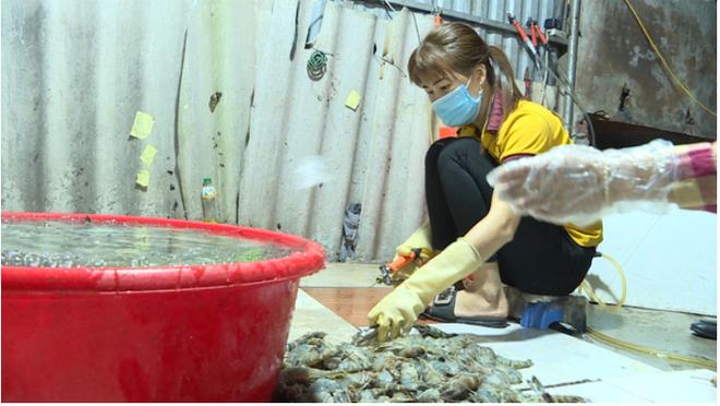 Chuyên gia Nguyễn Duy Thịnh: 10kg tôm có thể bị bơm tới 2kg tạp chất, cách để nhận biết tôm bẩn - Ảnh 1.