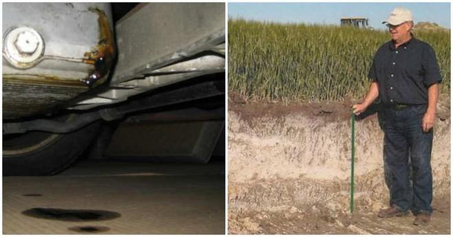 Tận dụng bãi đất trống của lão nông để đỗ xe, hôm sau các chủ xe chỉ còn nước khóc thét  - Ảnh 2.