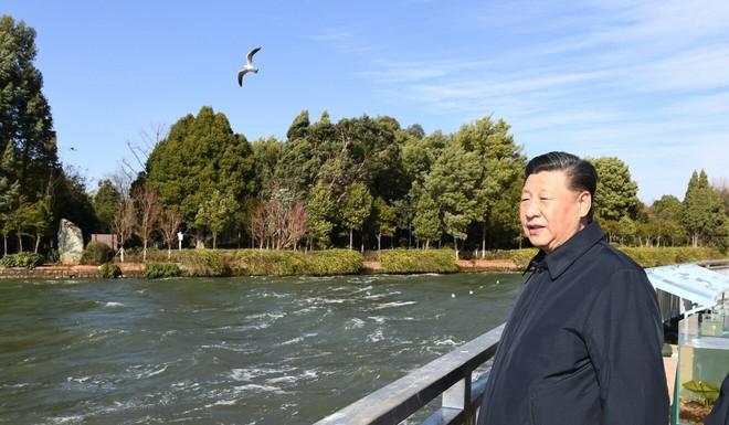 Vụ con voi chui lọt lỗ kim làm Bắc Kinh thịnh nộ: Ông Tập chỉ thị tận nơi, cấp dưới mặc kệ - Ảnh 3.