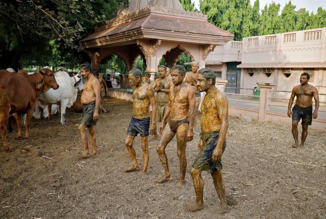 Người Ấn Độ tiếp tục trát phân bò lên người để 'chữa Covid-19': Bác sĩ cảnh báo hàng loạt rủi ro - Ảnh 2.