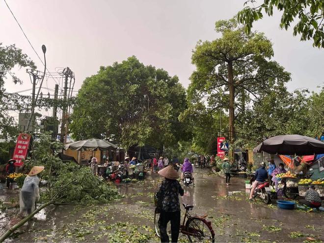 Hà Nội: Hàng loạt cây xanh bật gốc đổ rạp xuống đường sau cơn mưa lớn đầu mùa - Ảnh 6.