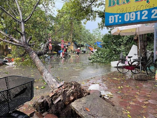 Hà Nội: Hàng loạt cây xanh bật gốc đổ rạp xuống đường sau cơn mưa lớn đầu mùa - Ảnh 4.