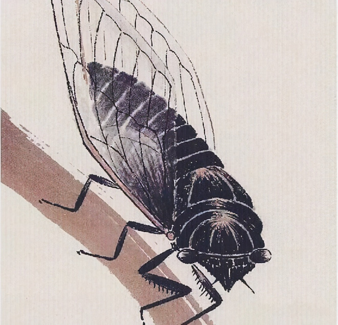 Bức tranh được định giá 800 triệu NDT mà chỉ vẽ 1 con ve sầu: Sau khi phóng to 20 lần, chuyên gia nhận định thật đáng đồng tiền bát gạo - Ảnh 2.