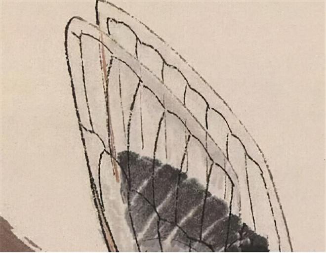 Bức tranh được định giá 800 triệu NDT mà chỉ vẽ 1 con ve sầu: Sau khi phóng to 20 lần, chuyên gia nhận định thật đáng đồng tiền bát gạo - Ảnh 4.