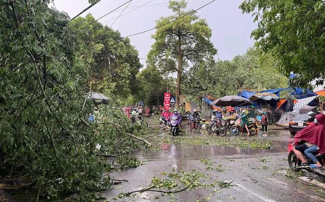 Hà Nội: Hàng loạt cây xanh bật gốc đổ rạp xuống đường sau cơn mưa lớn đầu mùa