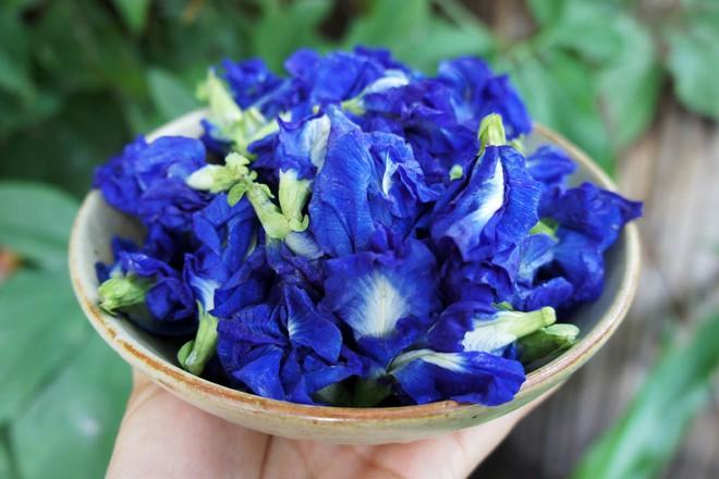 Thứ hoa rụng đầy bờ rào giờ được tiểu thương chợ mạng bán giá gần nửa triệu đồng/kg - Ảnh 3.