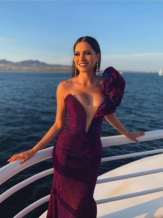 Tân Hoa hậu Hoàn Vũ thế giới 2020 đánh bại 73 mỹ nhân khắp thế giới nóng bỏng cỡ nào? - Ảnh 10.