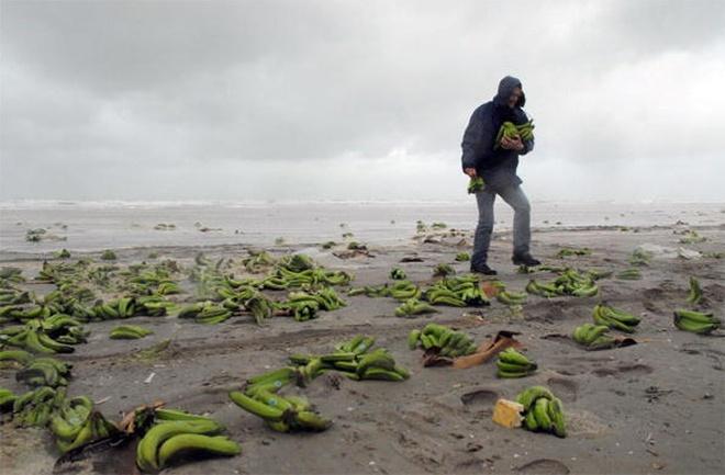 Những thứ đại dương mang trả lại con người: Kích thước thứ số 8 gây kinh ngạc tột độ - Ảnh 6.