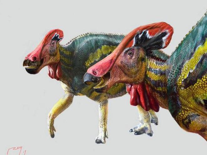 Phát hiện loài khủng long... biết nói sống ở Mexico 72 triệu năm trước - Ảnh 1.