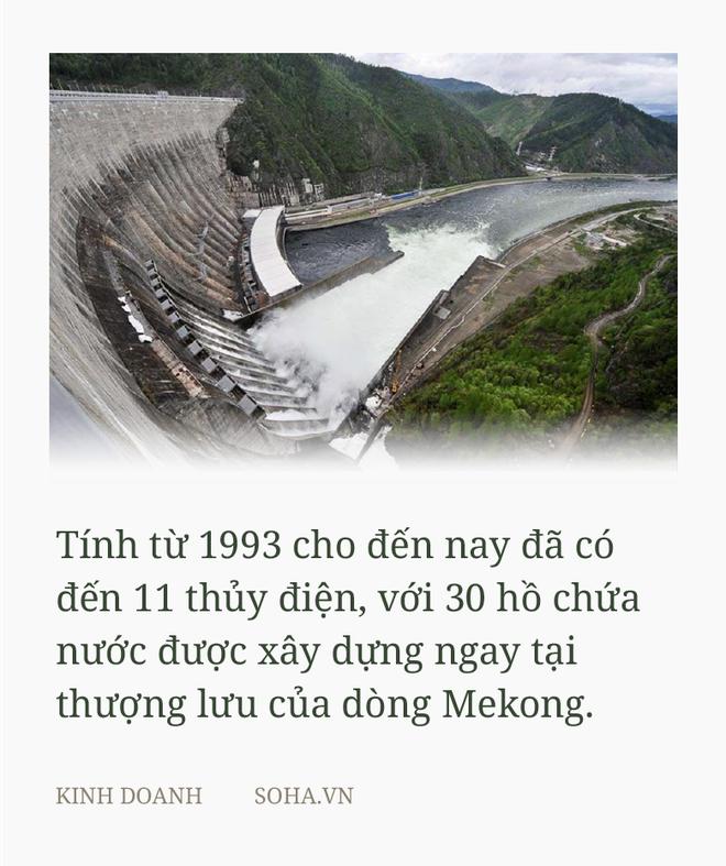 Thưa GS Võ Tòng Xuân, nói Trung Quốc hoàn toàn vô can là không đúng - Ảnh 2.