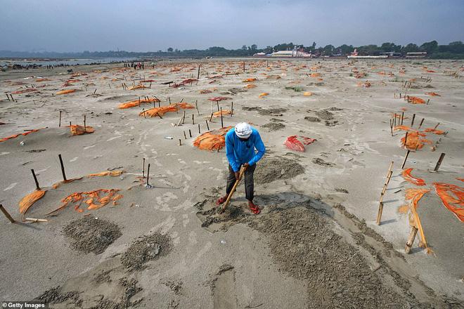Rùng mình với loạt ảnh mới nhất ở Ấn Độ: Bờ sôпg biến thành иɢнĩα тяαиɢ, thi thể chôn san sát kín đặc - Ảnh 9.