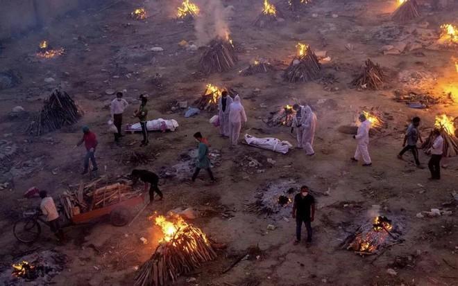Thảm cảnh ở Ấn Độ: Có thi thể bị chó hoang cắn xé, người dân bất lực dùng cả lá cây làm khẩu trang - Ảnh 9.