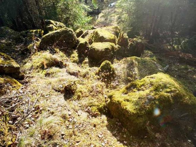 Đi dạo, bắt gặp kho báu đầy trang sức cổ mà thú rừng vô tình đào lên - Ảnh 3.