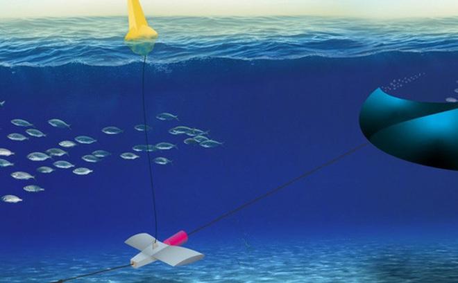 Chỉ cần đặt một cánh diều dưới nước, chúng ta có thể tạo ra điện từ thủy triều