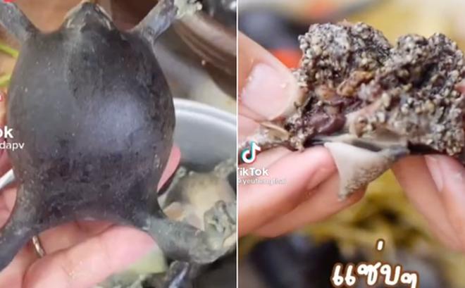 Người Thái sở hữu 1 món ''siêu kinh dị'', có người vừa thấy đã ''ngất xỉu'' tại chỗ nhưng ở Việt Nam cũng ăn con vật này?