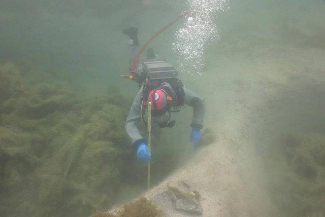 Thụy Sĩ: Nạo vét hồ, thợ lặn vô tình phát hiện bí mật 3.000 năm tuổi dưới lớp bùn dày - Ảnh 2.