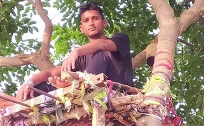 Ấn Độ: Nhiều bệnh nhân Covid-19 tự cách ly hàng chục ngày trên cây như trong phim Tarzan
