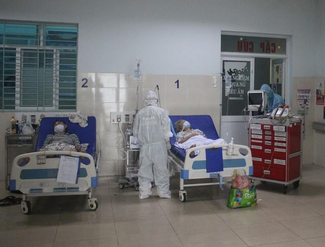 Vị thuốc thảo dược Việt Nam thử nghiệm lâm sàng điều trị cho bệnh nhân Covid-19 có công dụng ra sao? - Ảnh 1.