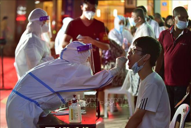 Việt Nam vừa tiếp nhận món quà quý từ Đức trong sáng nay - Hé lộ thời điểm Việt Nam có vaccine COVID-19 tự sản xuất - Ảnh 1.