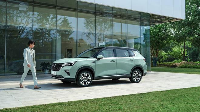 Kia Morning xây xẩm vì mẫu ô tô giá rẻ hơn 50 triệu vừa ra mắt - Ảnh 1.