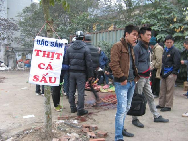 Hà Nội: Xẻ thịt cá sấu bán trên vỉa hè
