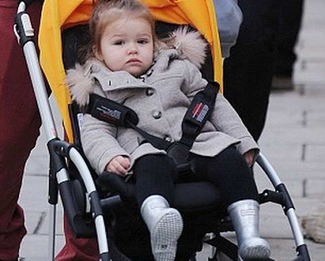 Ngó qua bộ sưu tập giày 1,5 triệu euro của nhóc tì nhà Beck