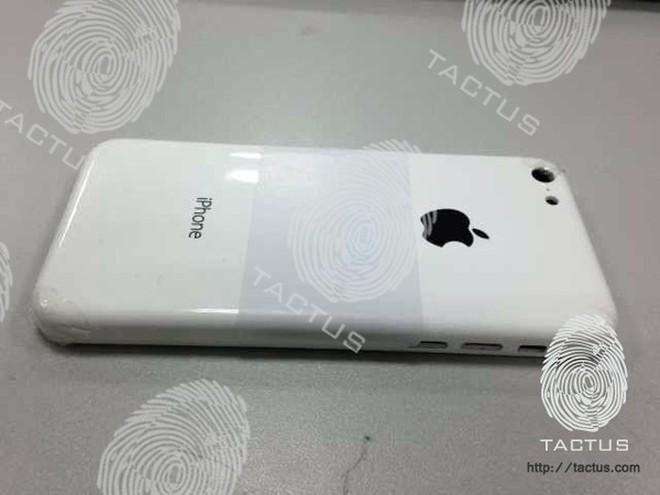 iPhone 5S ra mắt chậm do cảm biến vân tay