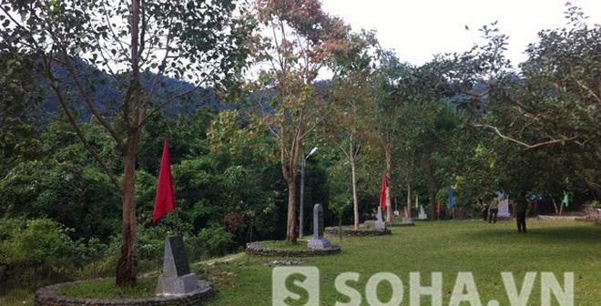 Cây bồ đề Đại tướng trồng ở Yên Tử bỗng nảy lộc trái mùa