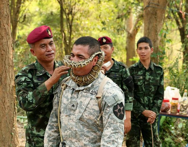 """Điểm lại những thử thách """"rợn người"""" với lính Mỹ trong """"Hổ mang vàng"""""""