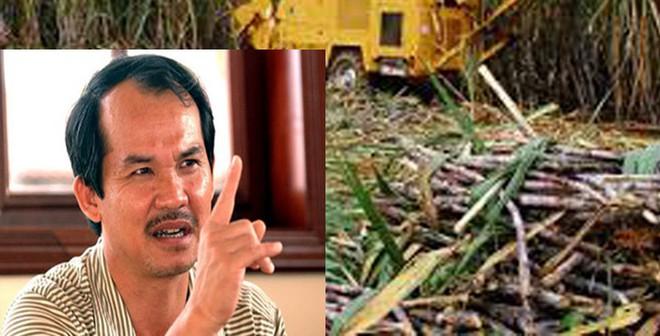 Thứ trưởng Nguyễn Cẩm Tú bị phản pháo gay gắt