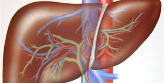 7 dấu hiệu cho thấy gan bạn đã bị tổn thương
