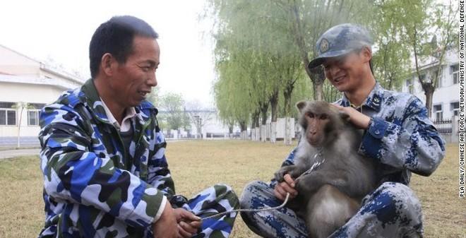 Không quân Trung Quốc nuôi khỉ để làm gì?