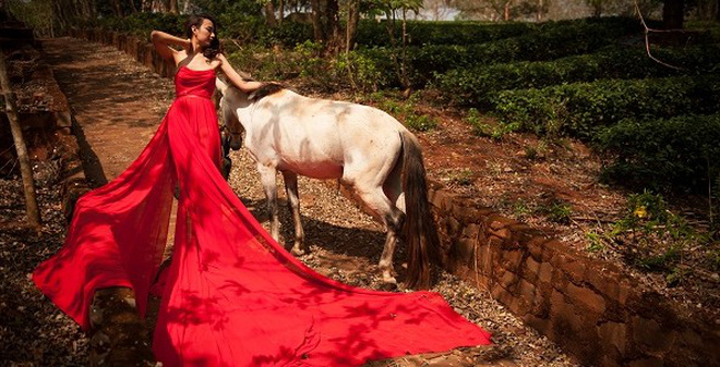 Ngọc Diễm lặn lội đi xa chụp ảnh cùng ngựa