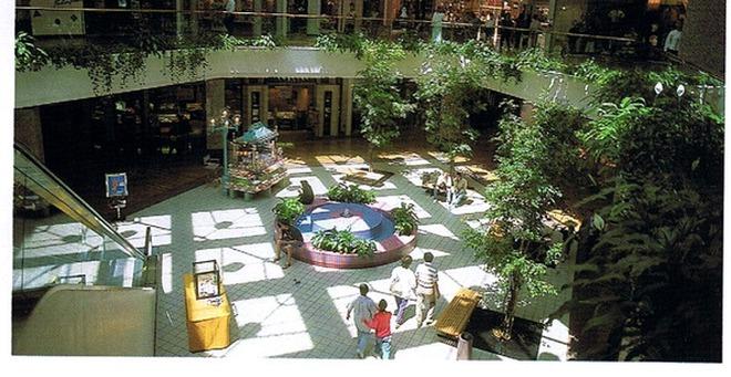 Chân dung ông chủ thâu tóm Vallco Shopping Mall của đại gia Trầm Bê
