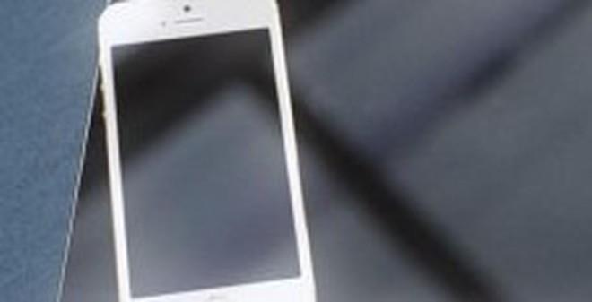 iPad Pro thừa hưởng thiết kế không viền màn hình của iphone 6