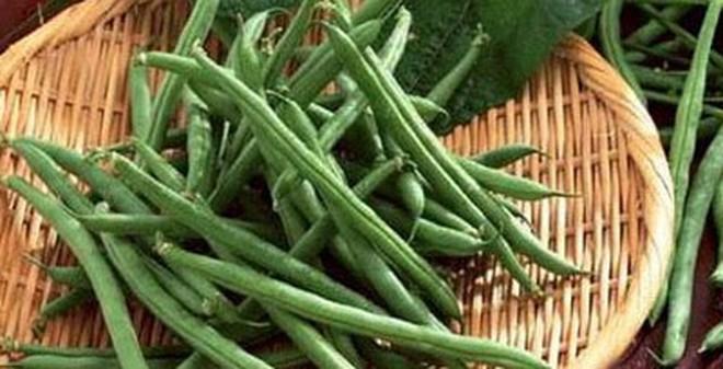 4 loại rau hay ăn có chứa độc tố cần giải độc trong quá trình nấu