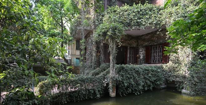 """Tận mục những ngôi nhà """"độc nhất vô nhị"""" tại Hà Nội"""